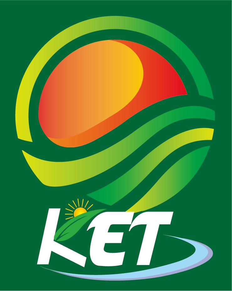 Kingstone Energy Technology Corporation